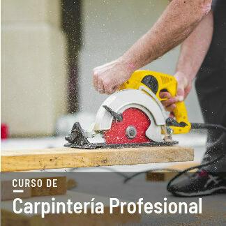 Curso Carpintería Profesional en Vídeo